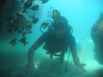 Scuba Diving Introductory Dives